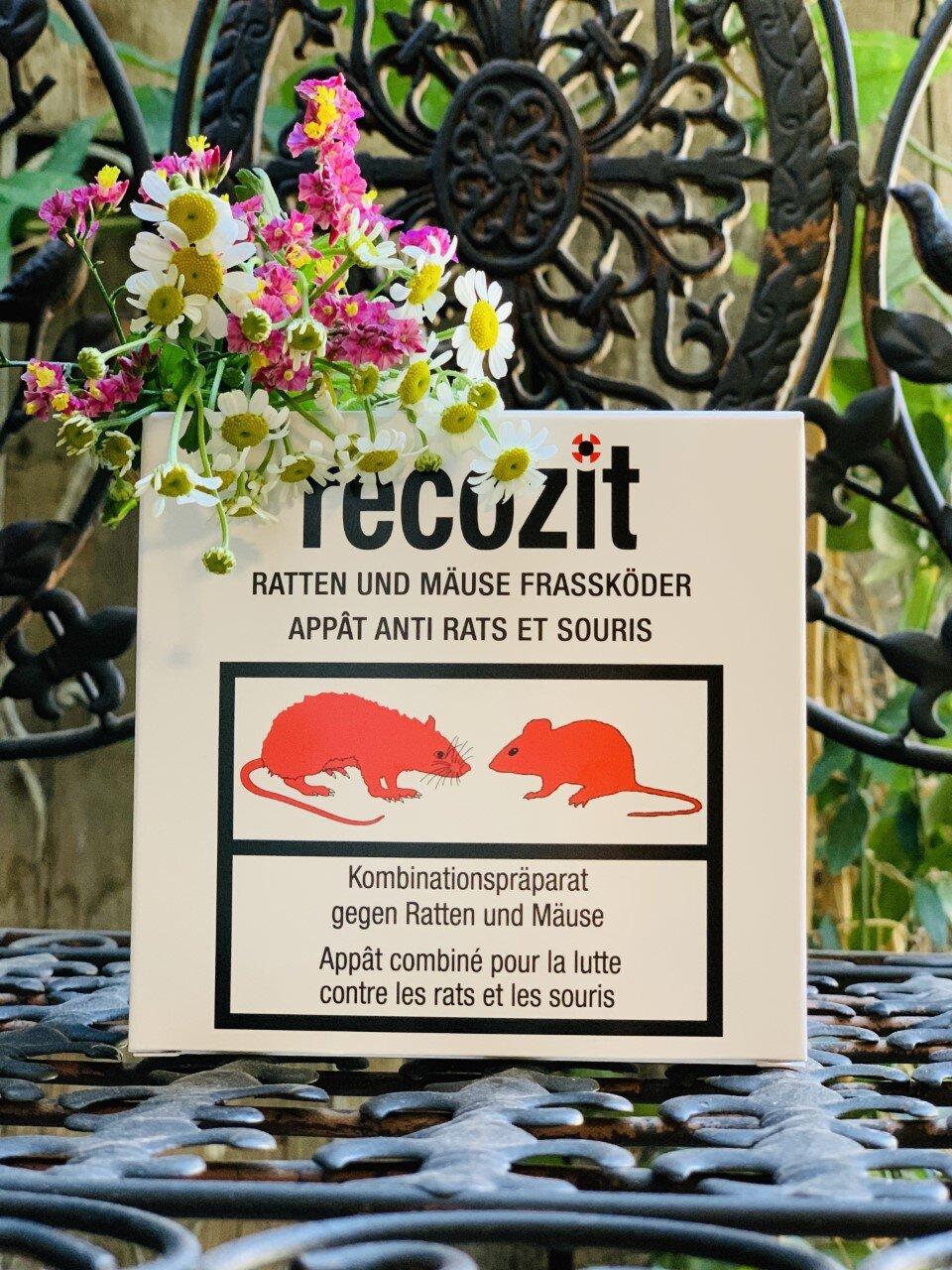 Huiles Essentielles Contre Les Souris recozit appât anti rats et souris